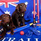 Australia day dogs by HayleyJS
