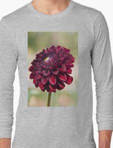Dahlia in the Halifax Public Gardens Long Sleeve T-Shirt