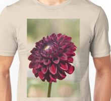 Dahlia in the Halifax Public Gardens Unisex T-Shirt