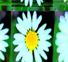 Daisy iPhone case Sticker