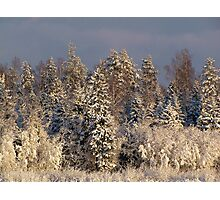 Beautiful winter Photographic Print