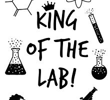 King of the Lab! by kasia793