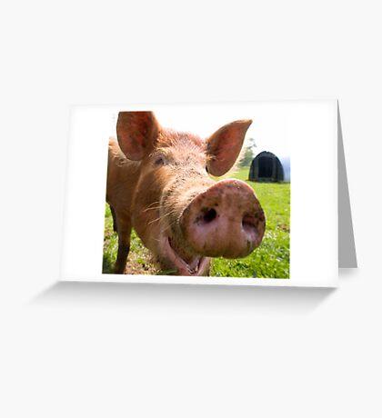 A happy Tamworth pig Greeting Card