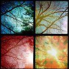 'Sunburst' by Jerry Kirk