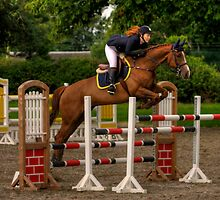 Millstreet horse show, Co.Cork,Ireland, 2011 by Igors