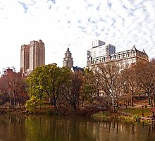 New York City Central Park Living - Impressions Of Manhattan by Georgia Mizuleva