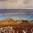 Arizona Two Times by Vanessa Prestage