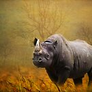 The Rhino by swaby