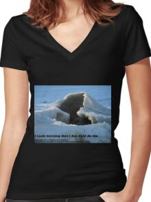 I Look Inviting But I Am Cold As Ice Women's Fitted V-Neck T-Shirt