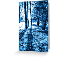 Blue Forest 2 Natural Light and Shadow Greeting Card
