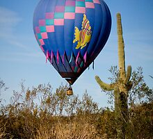 Hot Air Balloon Flight over the Lush Arizona Desert by Bo Insogna