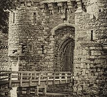 Beaumaris Castle  by Selina Ryles