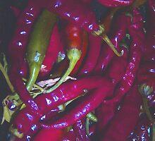 Hot Chilli by Caroline Everett