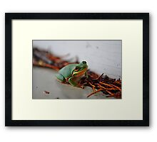 Hanging Out. Framed Print