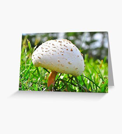 Mushroom Cap Greeting Card