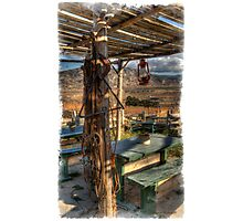 Lone Tack Post Photographic Print