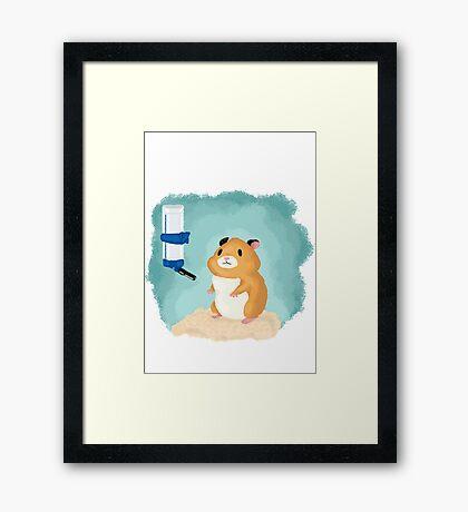Hamster life Framed Print