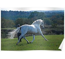 Andalusian Beauty Poster