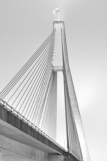 ANZAC Bridge - Glebe NSW by Mark  Lucey