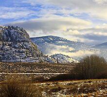 Southern British Columbia winter by Bruce Bidinoff