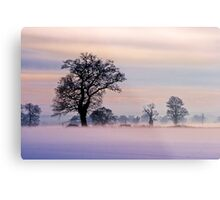 Norfolk Winter Metal Print