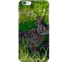 Peter Cottontail iPhone Case/Skin