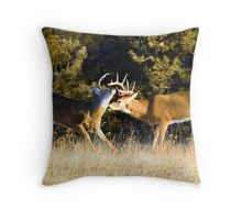 Sparring match - training to be the big buck Throw Pillow