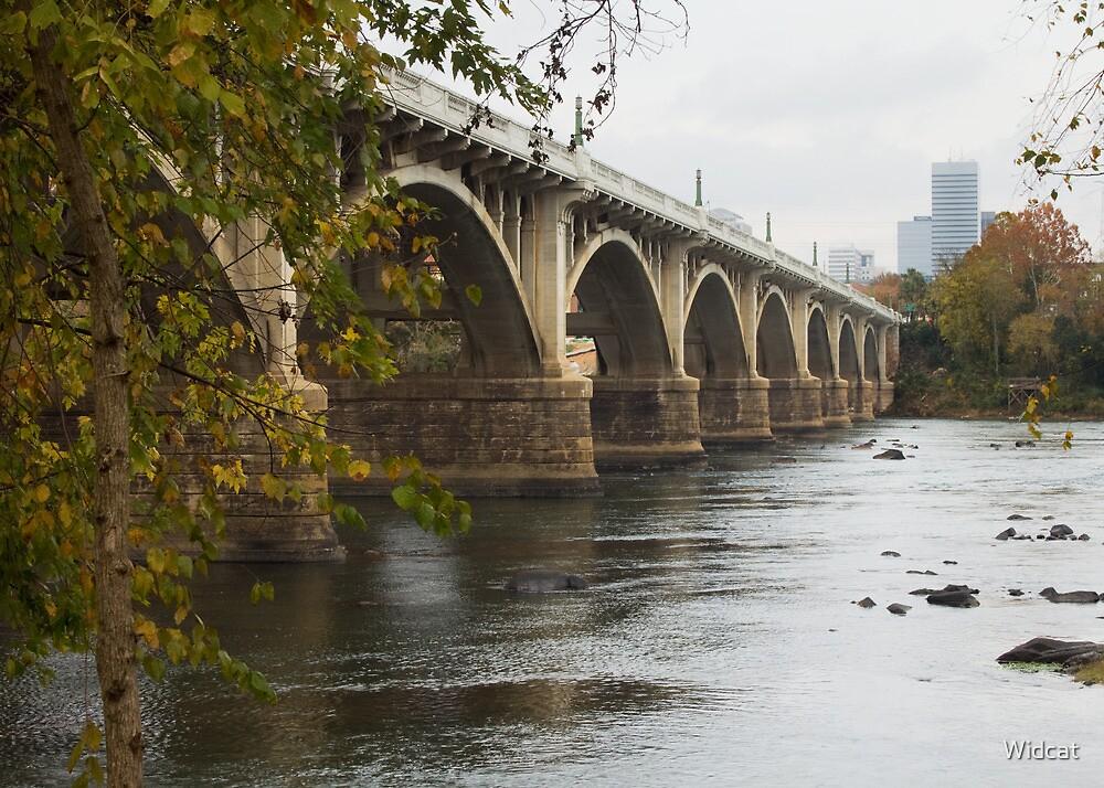 Gervais Street Bridge, Columbia, SC by Widcat