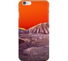 The Once and Future Malibu iPhone Case/Skin