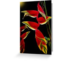 Lobster Claw Greeting Card