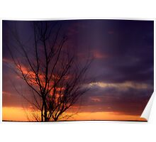 Winter Sunset on the Prairies 1 Poster