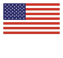 American Flag, STICKER, Stars & Stripes, Pure & Simple, America, USA by TOM HILL - Designer