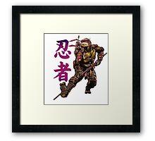 Ninjutsu TMNT Framed Print