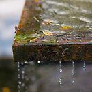 Water Fountain by Darren Freak