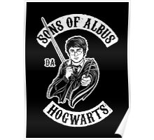 Sons of Albus Poster