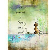 Ginkelmier Land ~ All You Need is Love and a Cat Photographic Print