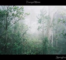 Tranquil Mists by WhisperingCrows