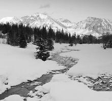 Winter view (b&w) by zumi