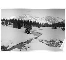 Winter view (b&w) Poster