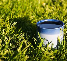 Coffee in the grass by Gservo