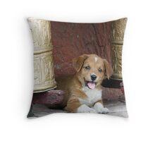 Tikse Puppy Throw Pillow