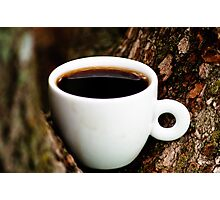 Trees Hold coffee well  Photographic Print