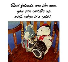 Rocking With Friends - Art Prints & Greeting Cards Photographic Print
