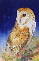 Barn Owl iPhone case by Ruth S Harris