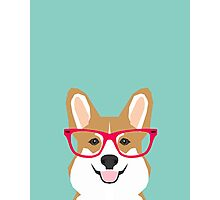 Teagan Glasses Corgi cute puppy welsh corgi gifts for dog lovers and pet owners love corgi puppies Photographic Print