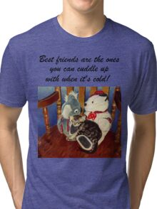 Rocking With Friends - Cat & Stuffed Animals iPhone Cases, T-Shirts & Stickers Tri-blend T-Shirt