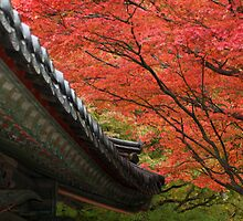 Contemplative Temples, South Korea by Jane McDougall