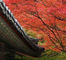 Autumn Leaves behind Roof Eaves, Bulguksa Temple by Jane McDougall