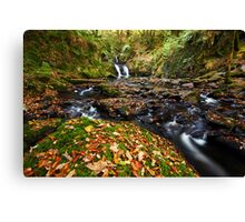 Mullinhassig - Co. Cork Ireland Canvas Print