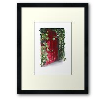 That mysterious red door on G- Street Framed Print